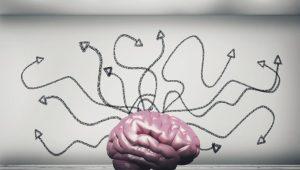 Um cérebro pensando em tantos caminhos possíveis e futuros desejados