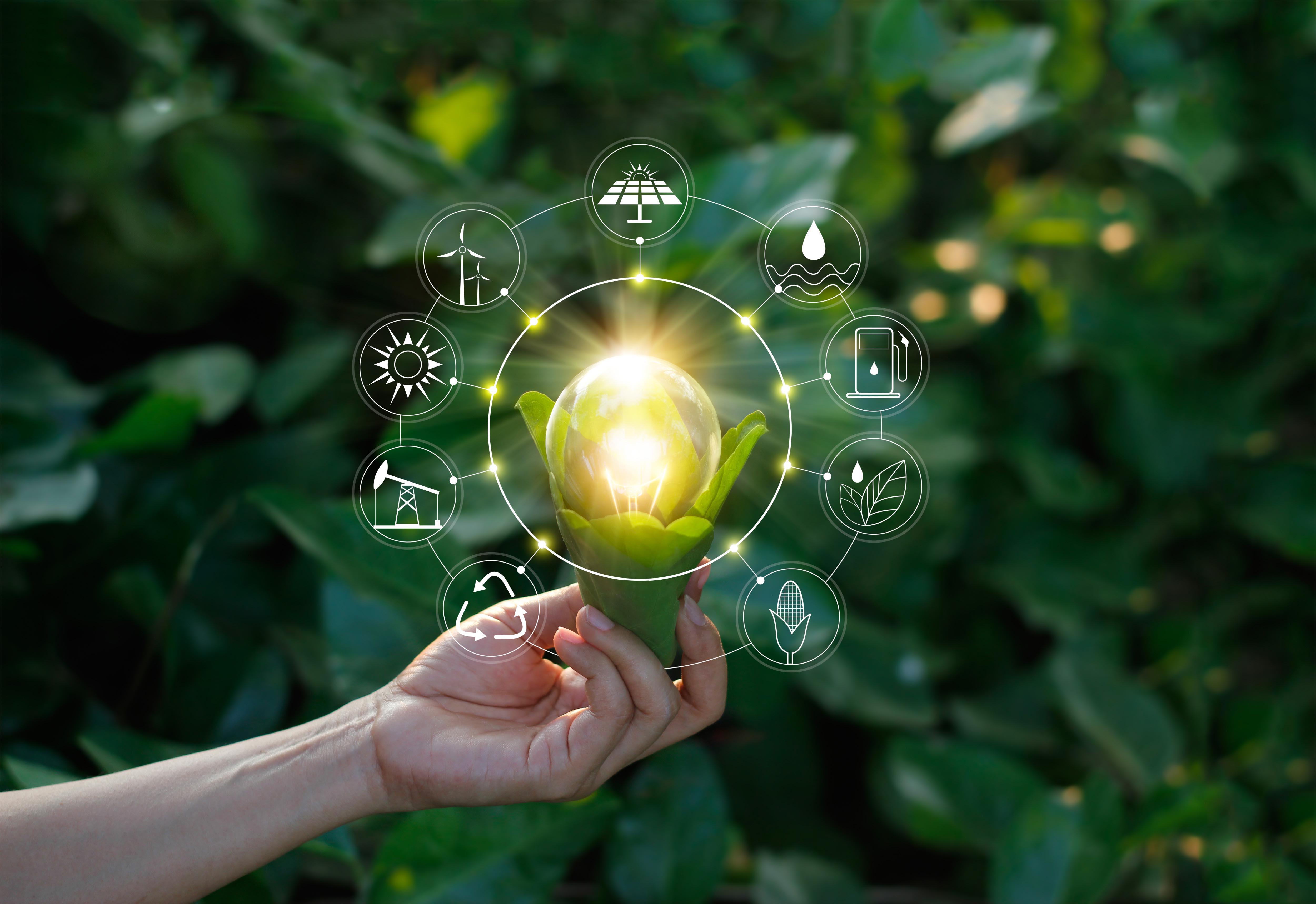 fundo de plantas, mão segurando lâmpada como se fosse uma flor desabrochando, ícones de meios sustentáveis em holografia ao redor